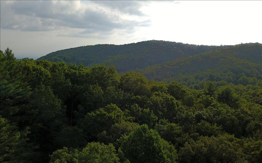 Additional photo for property listing at 82 AC Fort Mountain 82 AC Fort Mountain Ellijay, Georgia,30540 United States