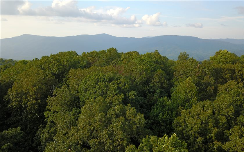 Additional photo for property listing at 82 AC Fort Mountain 82 AC Fort Mountain Ellijay, Geórgia,30540 Estados Unidos